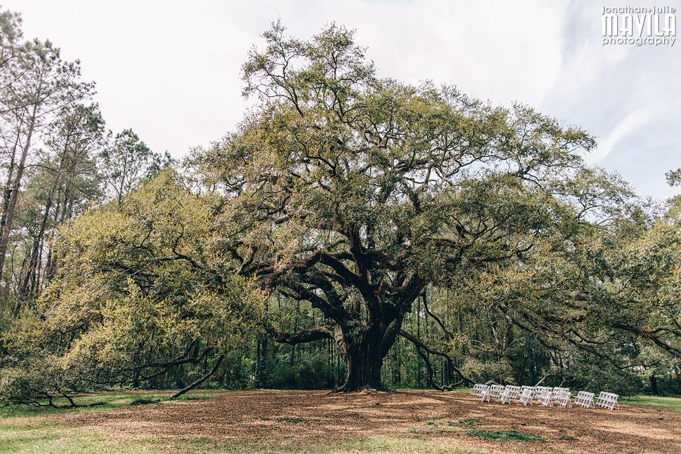 01-Lichgate-on-High-Road-Tallahassee-Florida-Wedding-Venue-Oak-Tree.jpg
